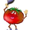 ¡Pichín, el tomate parlanchín!