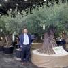 Iberflora y Vegetal World 2014 – El Ventanuco