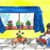 Plantas para dentro de casa – El Ventanuco