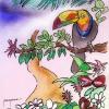 Fauna y Flora Silvestres – A TODA COSTA
