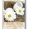 Un cuento de Francisco Ponce Carrasco -Escritor
