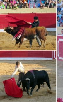 Santa Eulalia del Campo, más fiesta 2019 – El Ventanuco