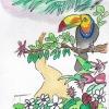 Diversidad biológica y su sostenibilidad – La Columna