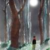 Luces y sombras de la nieve – El Ventanuco