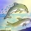 Día Mundial Contra la Caza de Ballenas – El Ventanuco