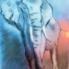 Recompongamos la vida de los elefantes – El Ventanuco