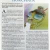 """Tiempo de """"Horchata"""" – A TODA COSTA"""