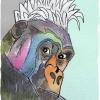 """""""Los monos Dimba"""" nuevo capítulo de Pichín en Terralia"""
