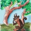 """Los monos """"Dimba"""" recobran protagonismo – La Columna"""