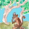 Día mundial de la Vida Silvestre –El Ventanuco