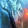 Día Mundial del Elefante 2020 – El Ventanuco