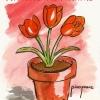 """Pensemos en """"VERDE"""" y cuidemos las plantas"""