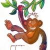 Día Mundial del Mono – El Ventanuco