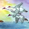 """El 9 de mayo """"Día Mundial de las Aves Migratorias"""" – La Columna"""