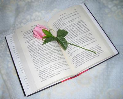 El libro y la flor