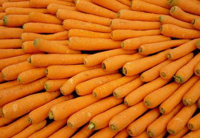 Zanahorias - Carlotas