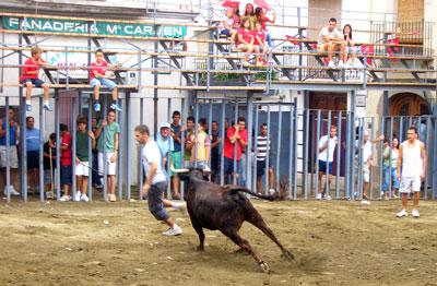 Quiebro al toro
