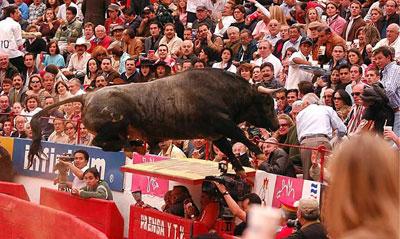 El toro 'Pajarito' vuela hacia las gradas