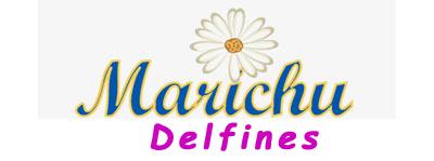 Cuento Delfines en pdf de Marichu Fernandes