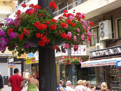 Calle comercial en Benidorm