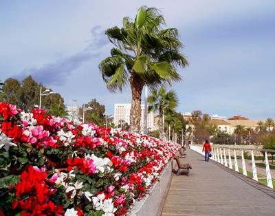 Puente de las flores de Valencia