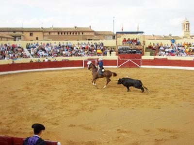 Vista general de la plaza de toros