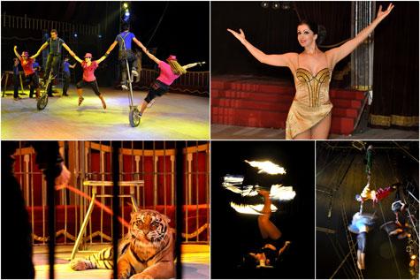 Circo Wonderland en plena actuación