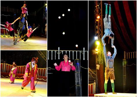 Varias escenas del Wonderland circo