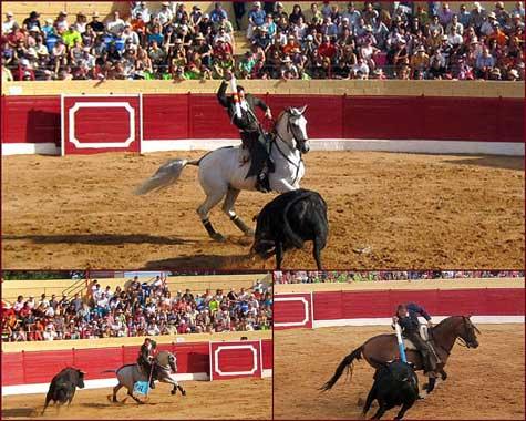 Tarde de Rejones en Santa Eulalia del Campo (Teruel)