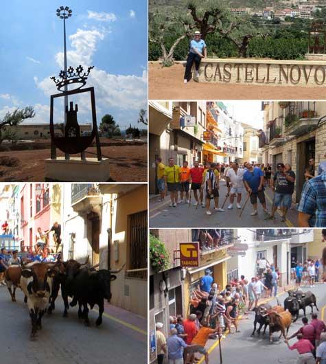 Toros en Castellnovo