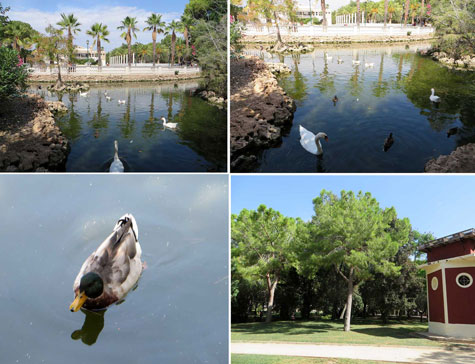 Parque de la Pinada (La Eliana)