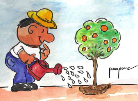Agua para riego (Día Mundial del Agua)
