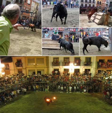 Castellnovo toros