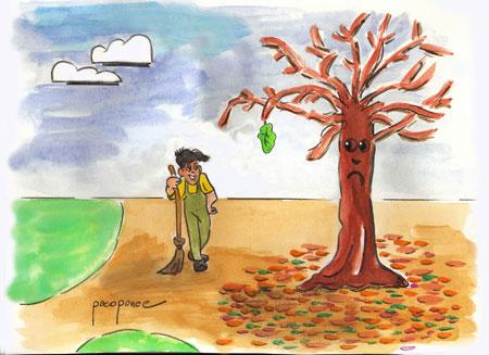 Ca da de las hojas en algunos rboles francisco ponce for Como se llaman los arboles que no pierden sus hojas