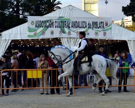 Asociación Cultural Andaluza de Mislata