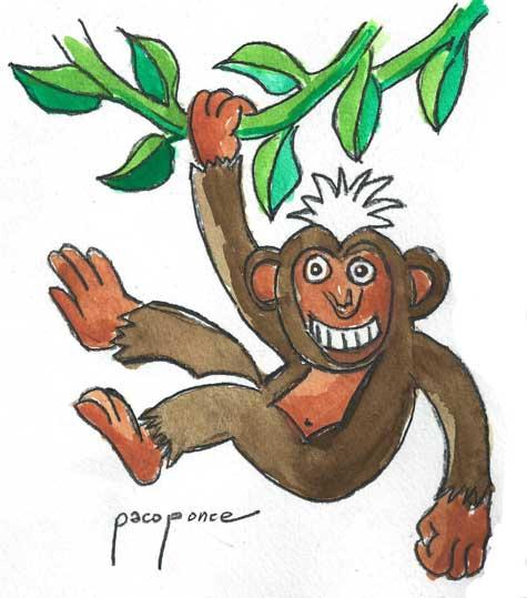 Monos Dimbas