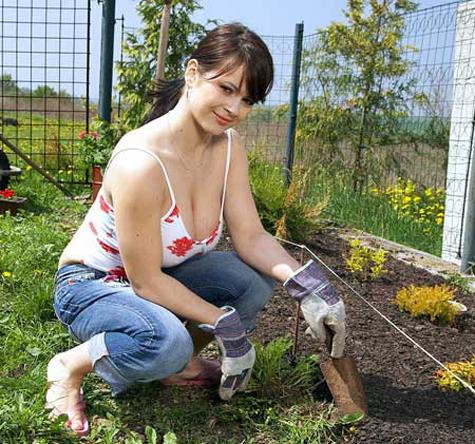 Jardinera de lujo