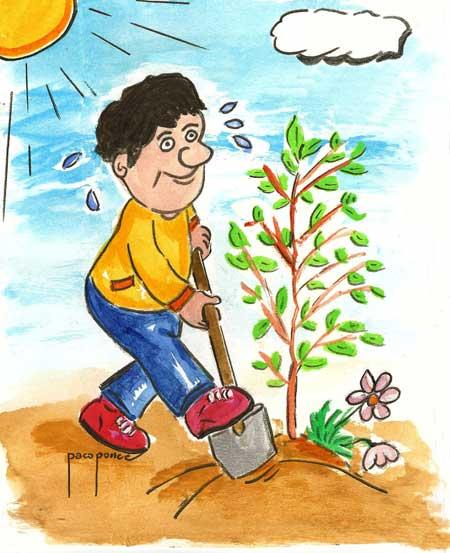 Trabajando en el jardin