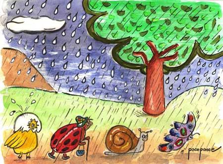 La lluvia un regalo del cielo