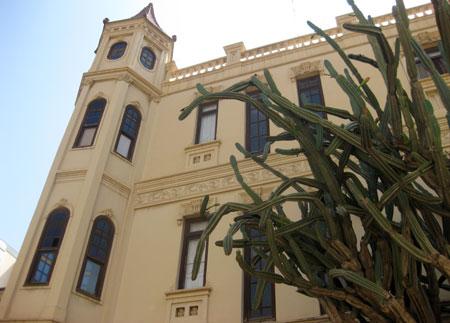Calle peatonal donde sorprende un cactus de gran tamaño