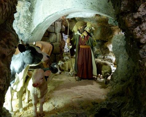 Pastor en Belén