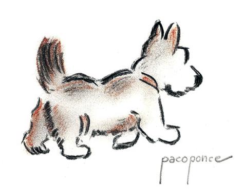 Dibujo acuarela de un perro