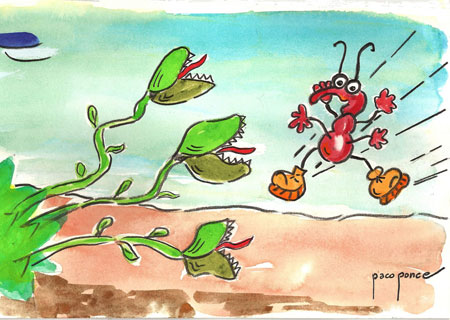 Ilustración informal de las plantas carnívoras