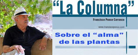 La Columna periodística de Ponce