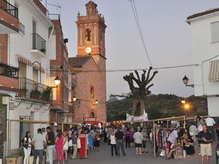 (Plaza del Olmo)