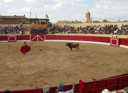 Plaza de toros-Santa Eulalia