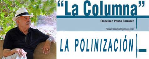 La Columna - Revista