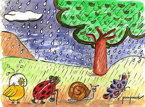 Pequeños animalitos bajo la lluvia