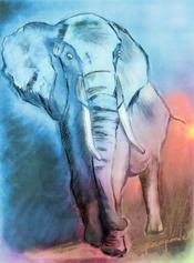 elefante-dibujo