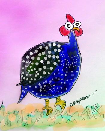 poner-gallina-pintada